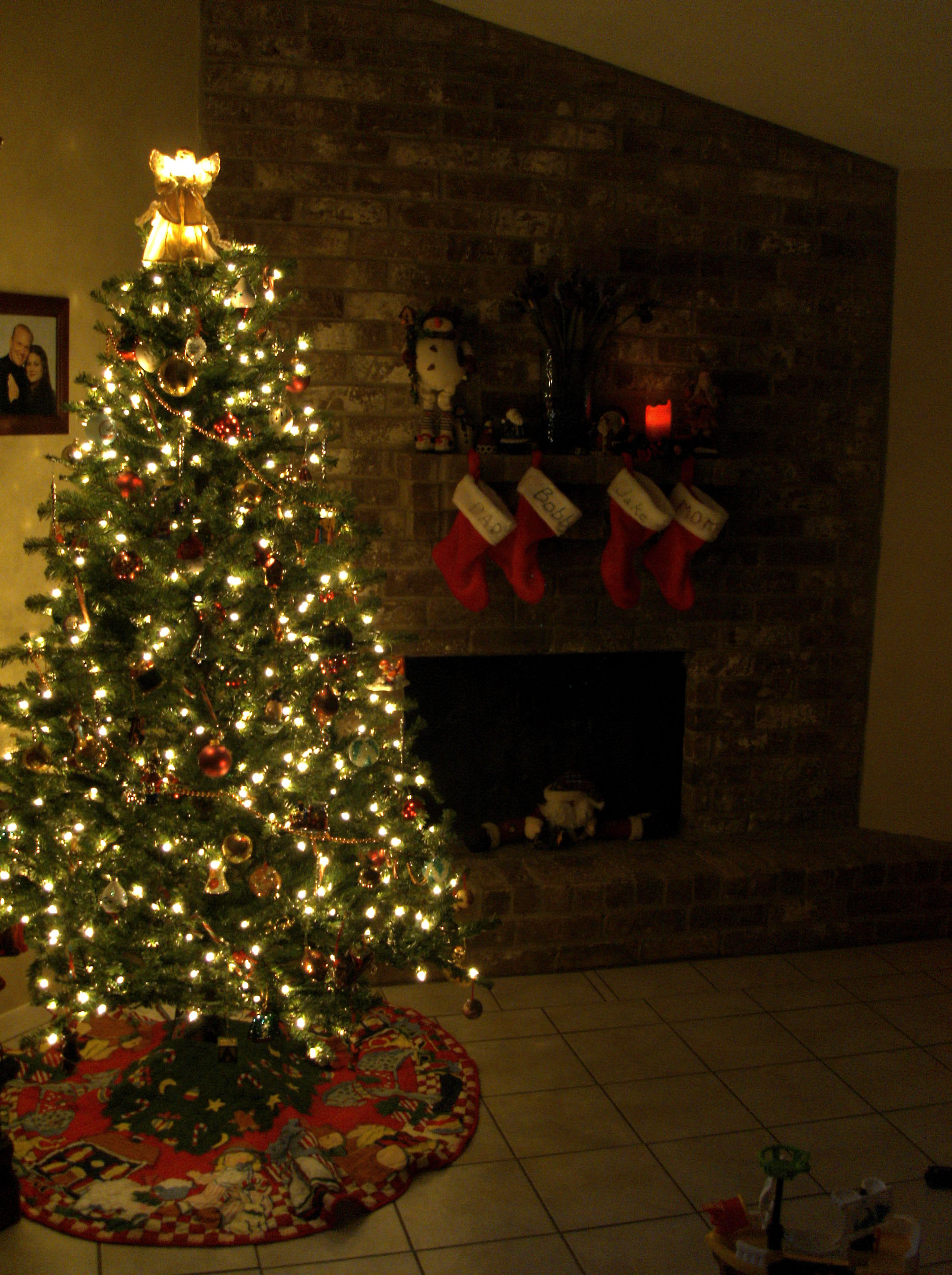 Christmas tree, oh Christmas tree | Plantman Landscape & Design